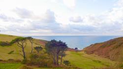 Picturesque Views