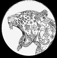 Jaguar-02.png