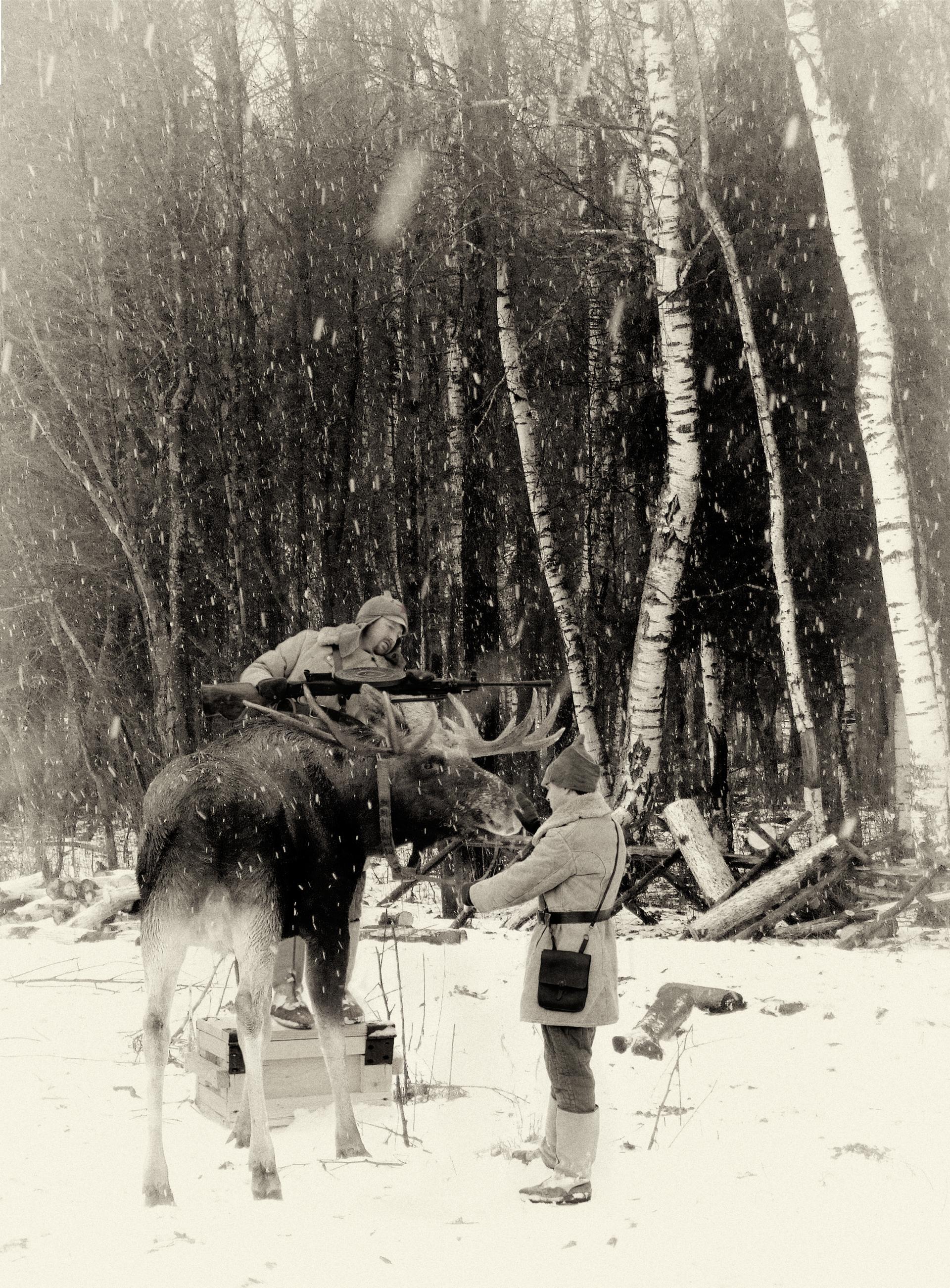 Лось в Украине внесен в список краснокнижных животных, охота на него запрещена, - Семерак - Цензор.НЕТ 5448