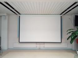 Моторизированный экран