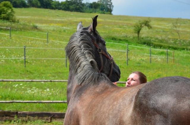 Leadership s koňmi