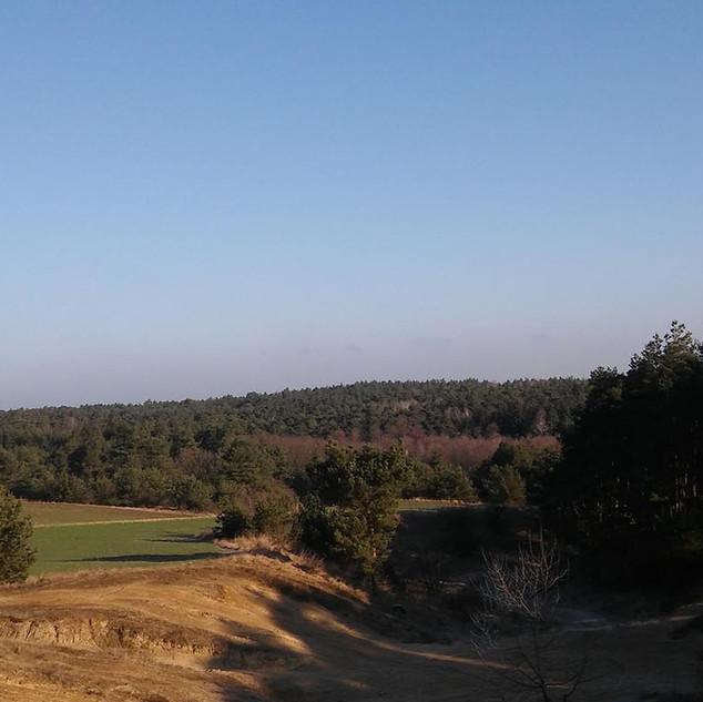 Krajobraz 1.jpg