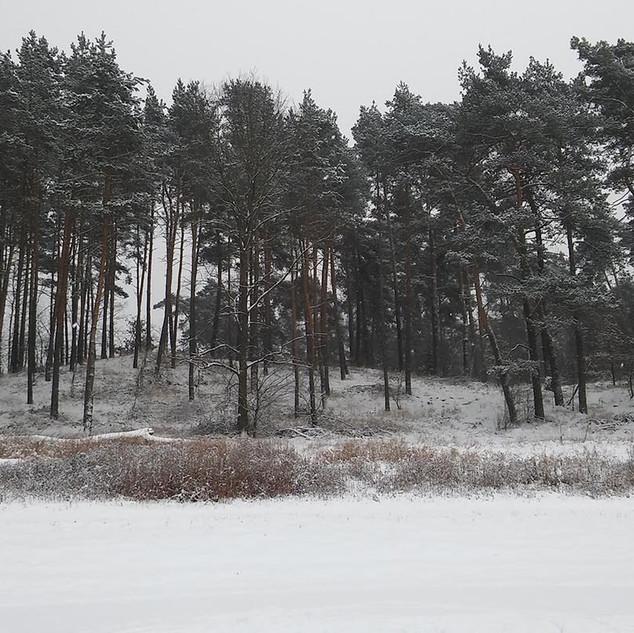 Zimowy krajobraz 2.jpg