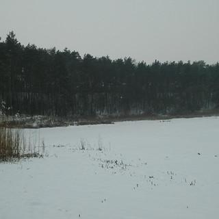 Zimowy krajobraz 1.jpg
