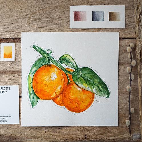 """Oranges (7.8x7.8"""")"""