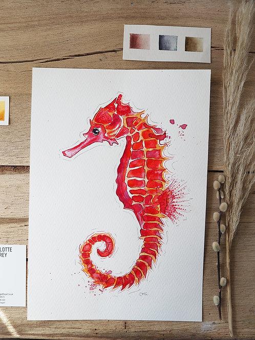 Red Seahorse (23.5x34cm)