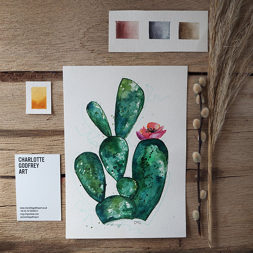 Cactus (A5)