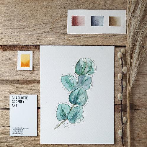 Calming Eucalyptus (A5)