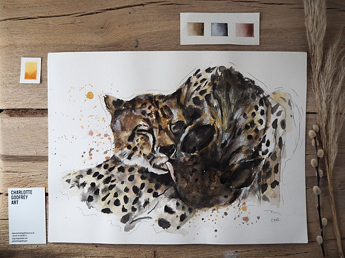 Kissing Leopard (A3)