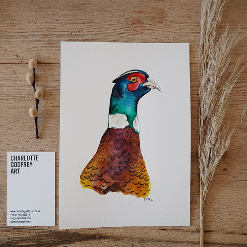 Pheasant (A5)