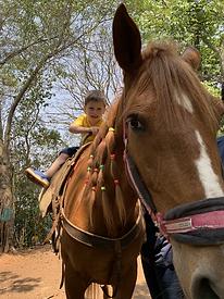 Criança em atendimento com cavalo na Equoterapia Transformar