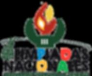 Cartel III Olimpiadas FESD_Felguera_Mier