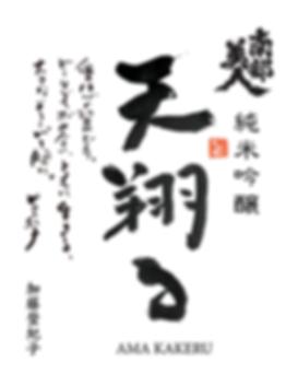 天翔るfix統合19AP0529+22-L_shusei_sampleのコピー.