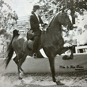 1900's Michigan Horse Shows