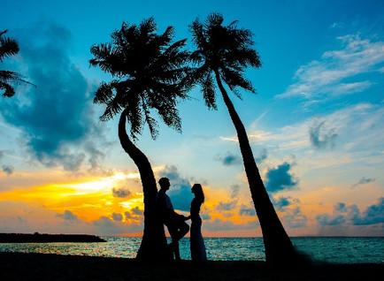 Honeymoon Planning Timeline