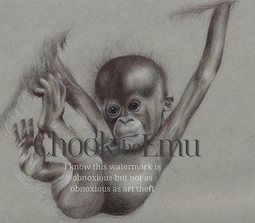 """Baby Orangutan"" - Wall art print"