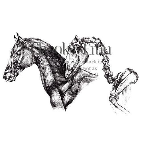 """""""Equus"""" - Wall art print"""