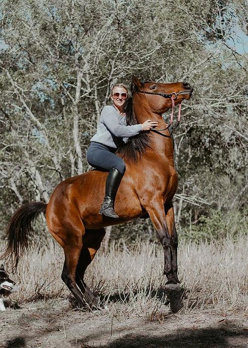 Chook the Emu horse riding equestrian