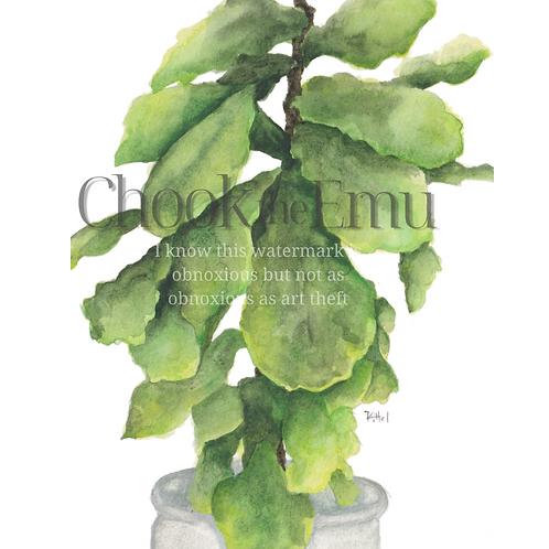 """""""Fiddle Leaf Fig"""" - Wall art print"""