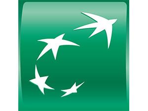 logo BNP.jpg