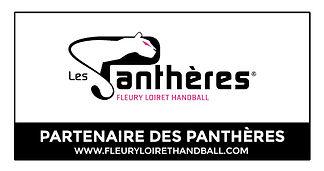 Les Panthères
