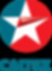 caltex-logo-AA6101945D-seeklogo.com.png