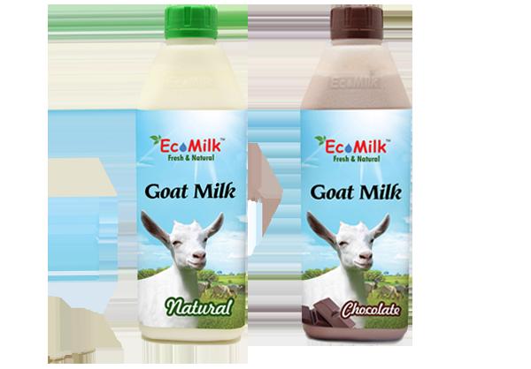 bsl-milk.png