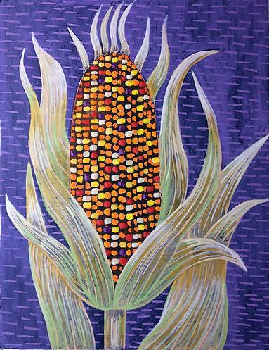Multi Colored Corn.JPG