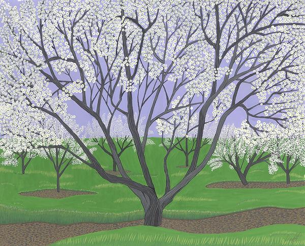 AppleBlossoms.w.jpg
