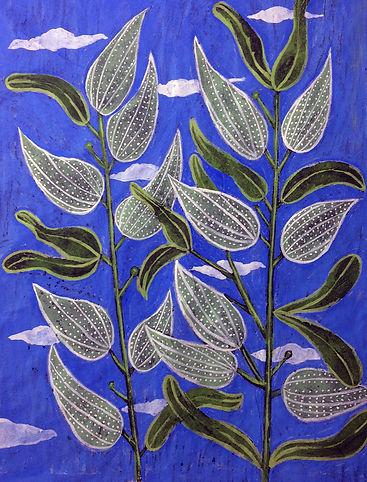 Blue Green Milkweed.JPG
