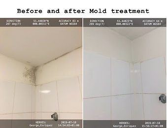 Before and after mold treatment.jpg