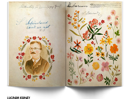 Illustrated Family History