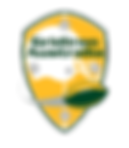 Gridiron Australia Logo.png
