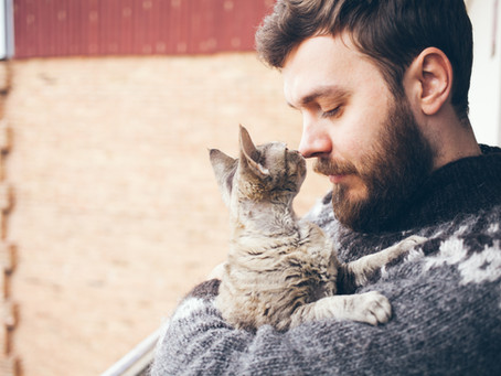 How Cats Can Help You with Stress and Anxiety