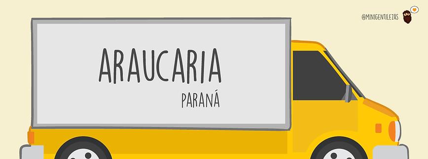 18-araucaria.png