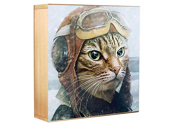 El gato piloto