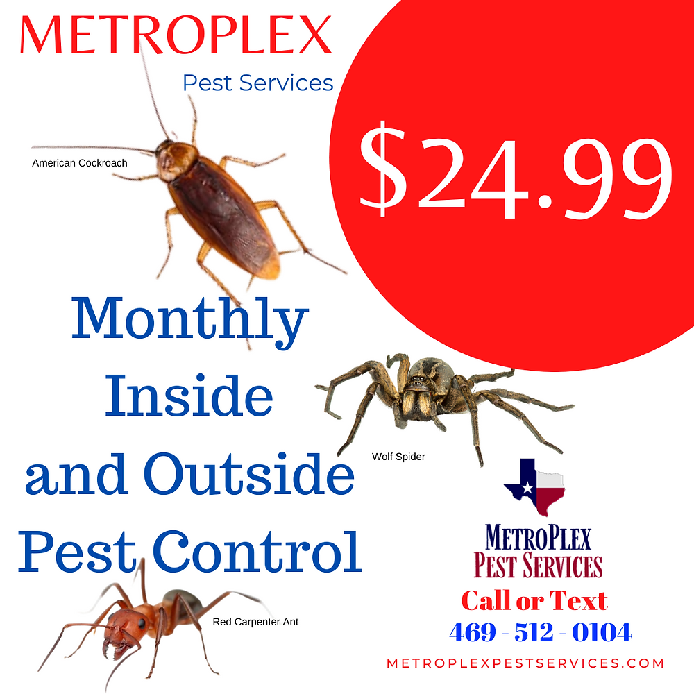 $24.99 Monthly Inside and Outside MetroPlex Pest Services North Texas