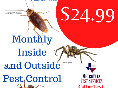 $24.99 Monthly Inside and Outside Pest Control Service MetroPlex