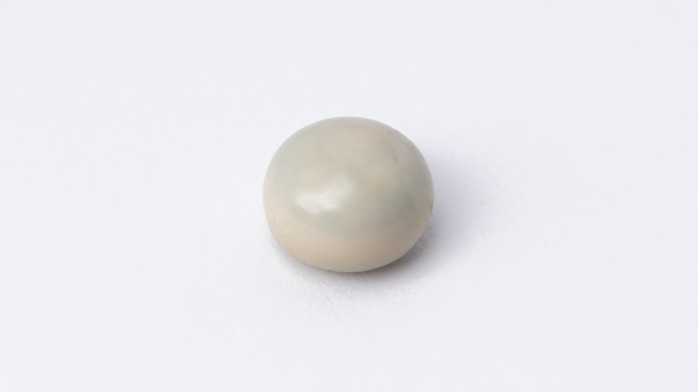 Wild Quahog Pearl - 63922