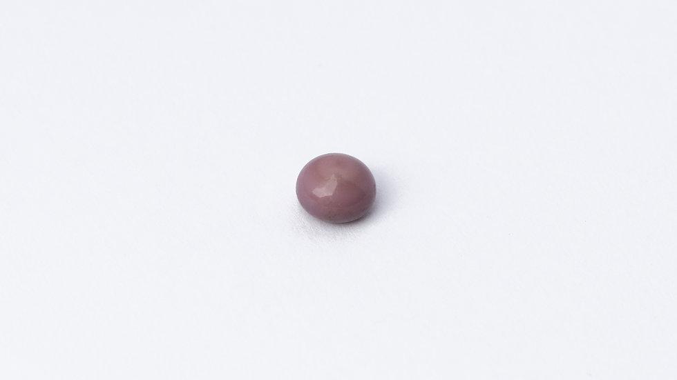 Wild Quahog Pearls - 79114