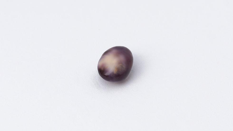 Wild Quahog Pearl - 67294