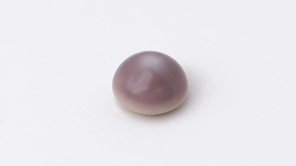 Wild Quahog Pearl - 48994