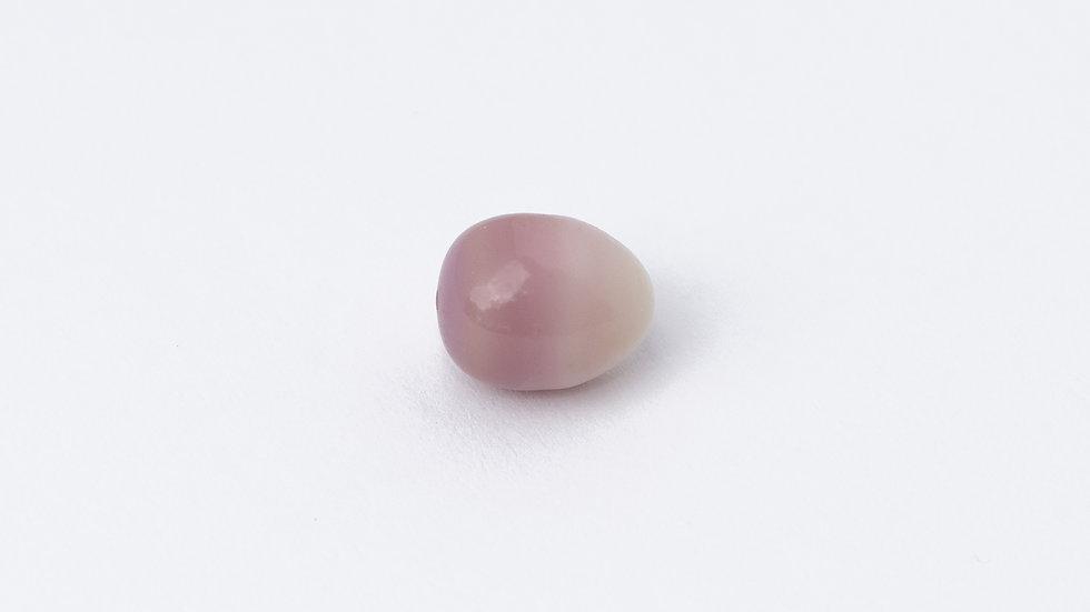 Wild Quahog Pearl - 16991