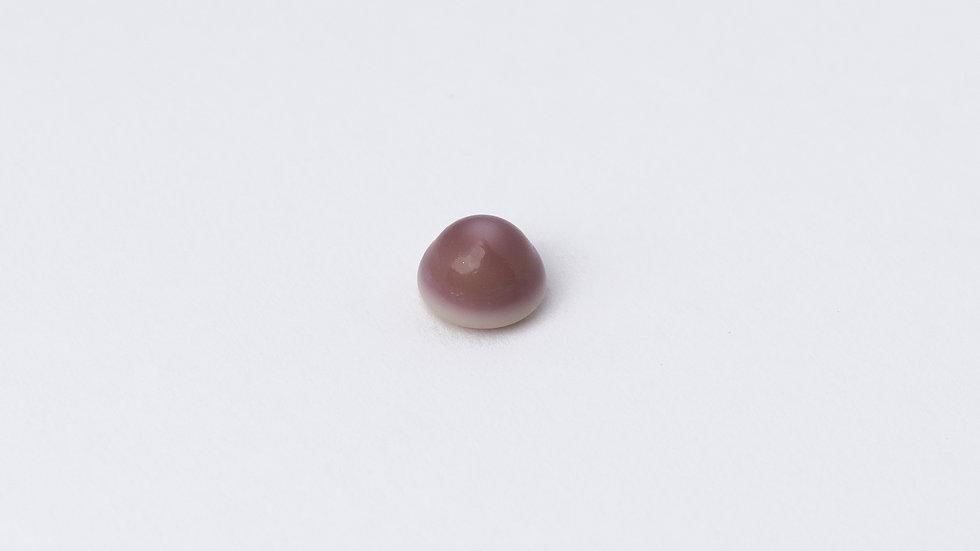 Wild Quahog Pearl - 17165