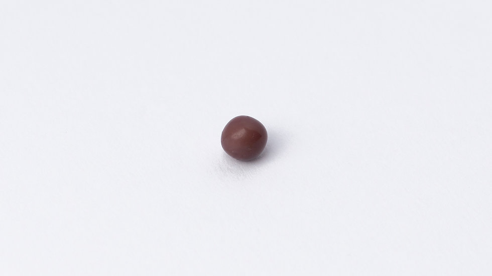 Wild Quahog Pearl - 61689