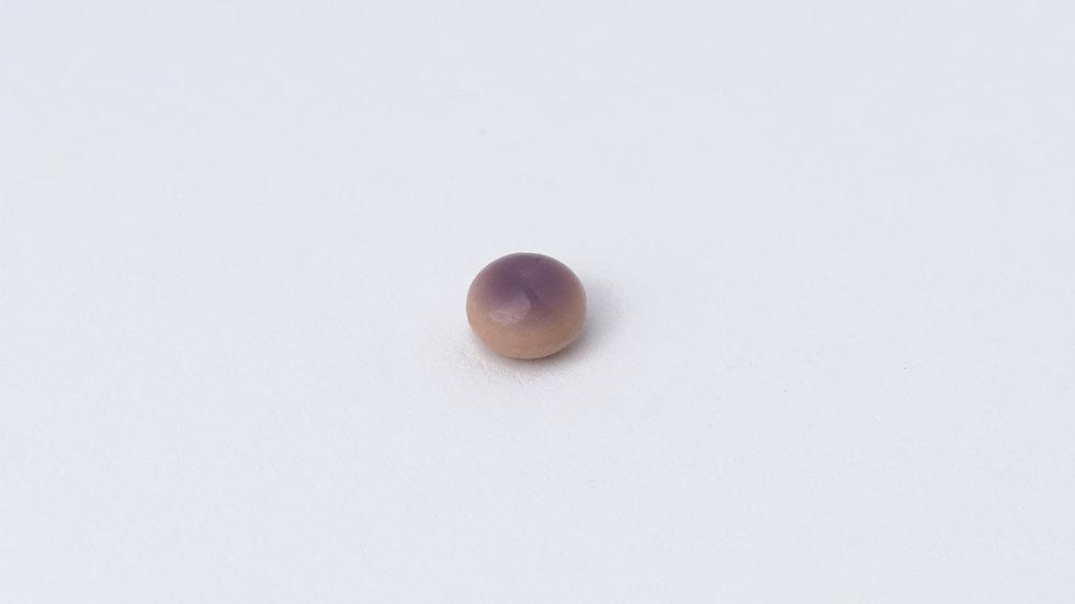 Wild Quahog Pearl - 59199