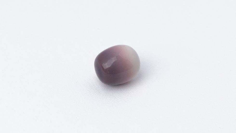 Wild Quahog Pearl - 36208