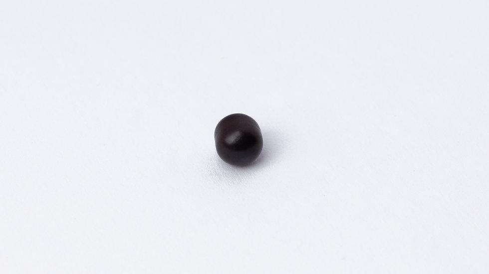 Wild Quahog Pearl - 16164