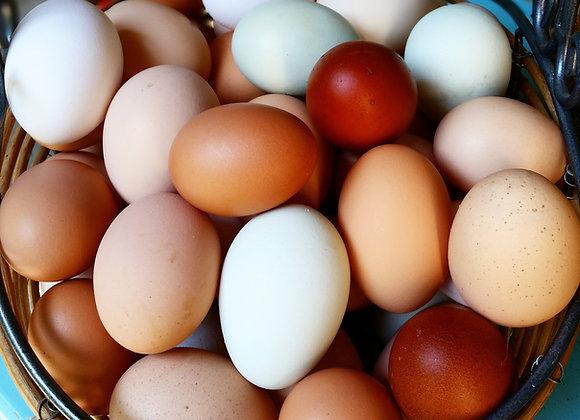 Fresh Eggs (1 dozen)