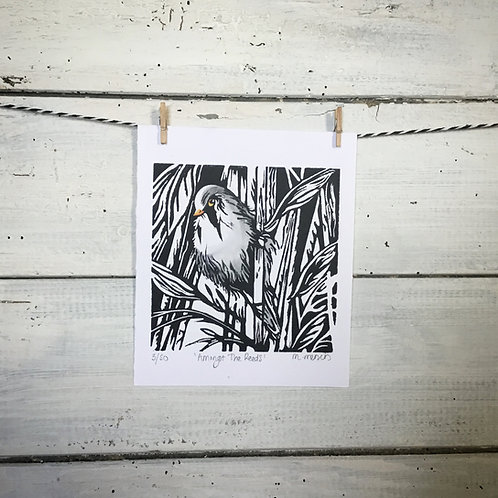 'Amongst The Reeds' (Bearded Tit) Lino Print